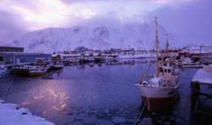 Снегът затруднява работата на пристанището в Лом