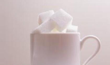 Захарни заводи очаква консолидирани продажби на стойност 90 млн. лв. за 2007 г.