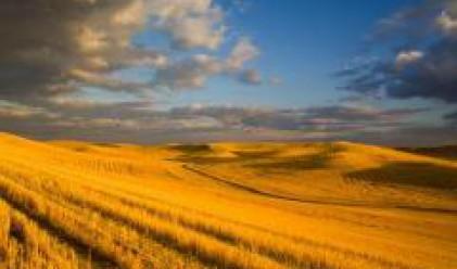 Фарин отчита значително увеличение на площите обработваема земя