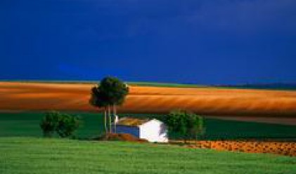 Bulgarian Real Estate Fund REIT Boosts Agricultural Portfolio to 35,500 Decare of Land