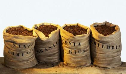 Бразилия държи 32% от световния пазар на кафе