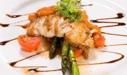 Риба-тон продадена за 300 хил. евро в Япония