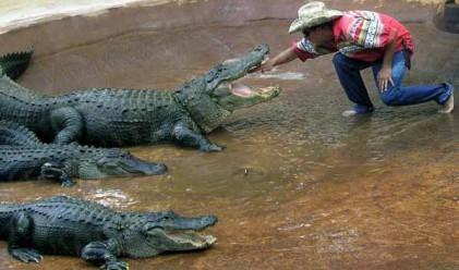 Най-опасните професии в туризма