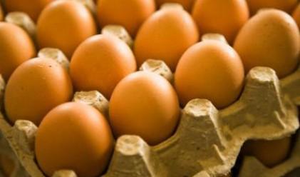 Яйцата скачат тройно от полога до магазина