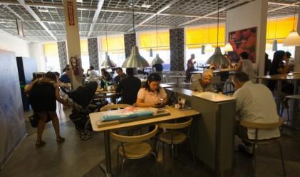 Ресторантьори в Белгия бесни на евтините кюфтенца на IKEA