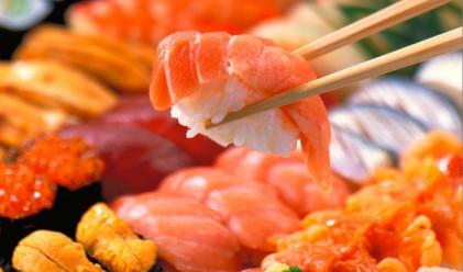 Риба тон за 565 000 евро бе уловена край Япония
