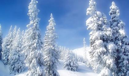 Снегът удари туризма