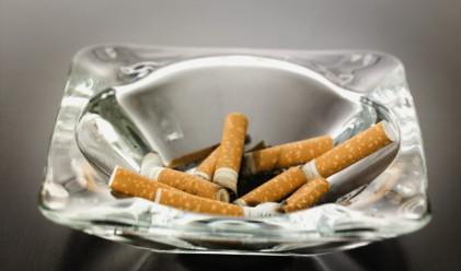 С 3% са намалели пушачите в България за година