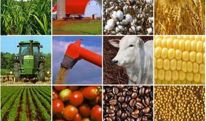 Хедж-фондовете положителни в очакванията си за суровините