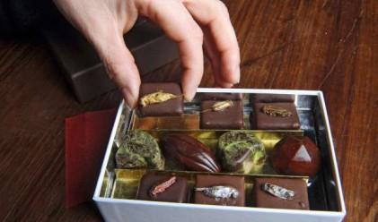 Шоколадови бонбони с… червеи?!