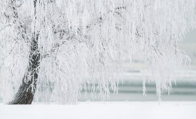 Защо светът притихва, когато вали сняг - научното обяснение