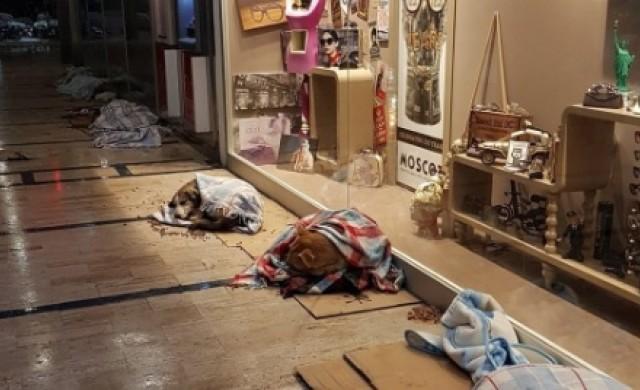 Истанбулските молове и магазини приютиха бездомни животни