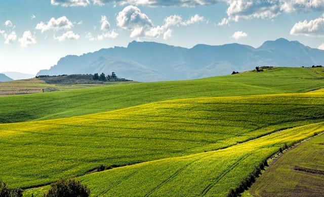 Договорите за аренда на земя с 10 г. минимум