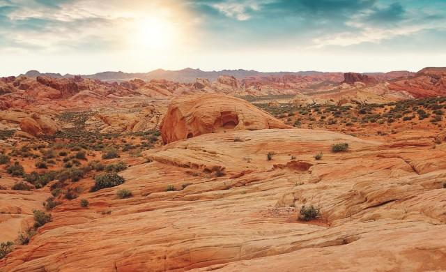 25% от Земята ще се превърне в пустиня през следващите 30 години