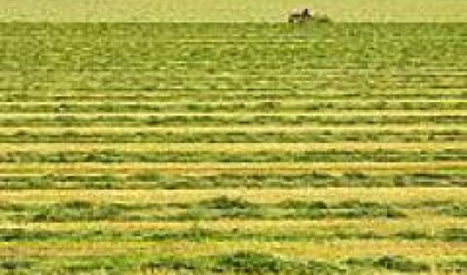 Булленд инвестмънтс е закупило 15 хил. дка земеделска земя към 2006 г.