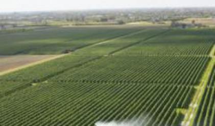 Агро Финанс АДСИЦ е придобило 10 306 дка земеделка земя към края на 2006 г.