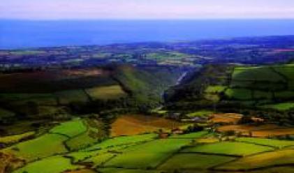 Извършени са 23 замени на земи от Държавния горски фонд през 2007 г.