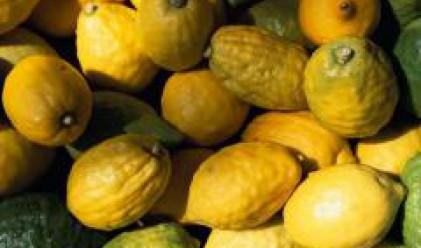 Цената на олиото и на лимоните е с 81 на сто по-висока от преди година