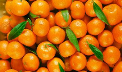 По-скъпи плодове и зеленчуци
