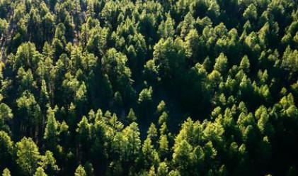 Данъчни преференции за екосъобразен бизнес предлага БАН