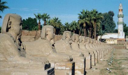 Големи загуби за египетския туризъм
