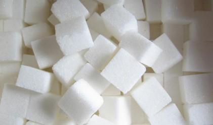 Захарта поскъпна с 20 ст. за седмица