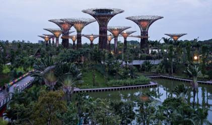 Високотехнологичните дървета на Сингапур