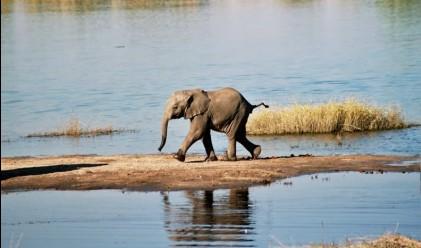 10 от най-интересните африкански резервати