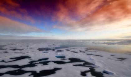 Рекордно висока температура измерена на Антарктида