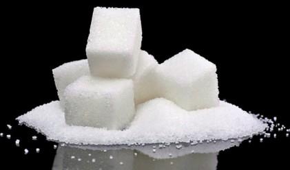 Захарта с най-голям дневен ръст от 23 години