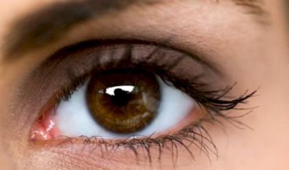 16 интересни факта за тренировка на любопитните умове
