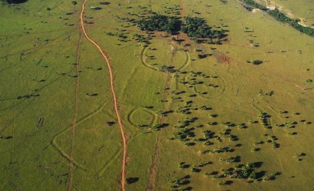 Откриха стотици двойници на Стоунхендж в Амазонската джунгла