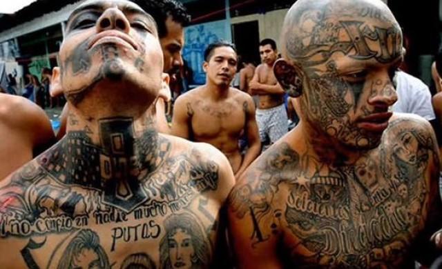 Уличната банда, с която Тръмп прокарва имиграционната си политика