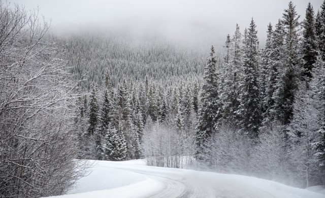 Четири жертви взе снега в Япония