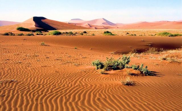 Най-големите защитени зони на планетата