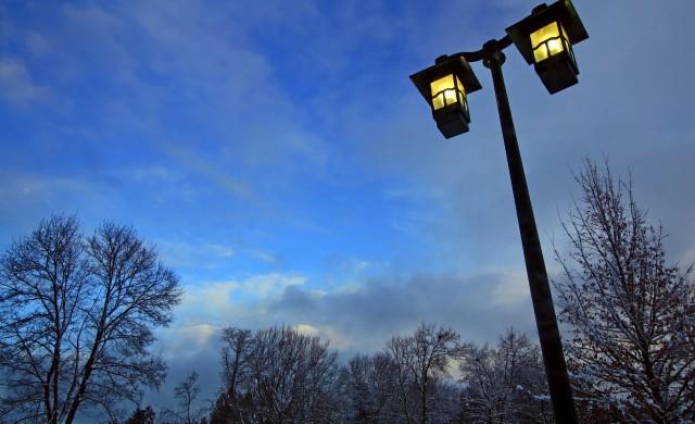 Кафява енергия: Кучешки екскременти осветяват британски парк
