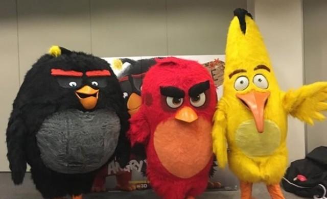 Книжата на създателите на Angry Birds се сринаха с 44%