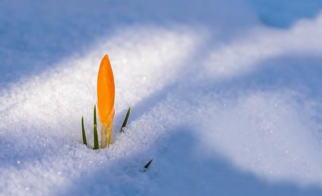 Студ и сняг ни чакат и утре, жълт код за 18 области