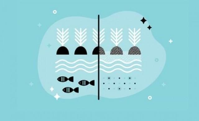 Какво е общото между сладководната риба и марихуаната?