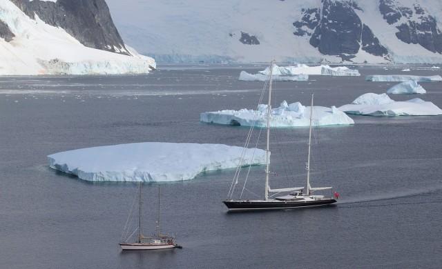Рекордно висока температура беше измерена на Антарктида