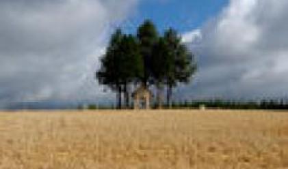 Агро Финанс АДСИЦ планира да притежава 170 хил. дка земи в края на 2007 г.