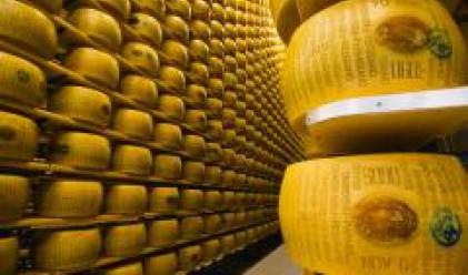 Със 7.5% е поскъпнало олиото, поевтинява сиренето и кашкавалът