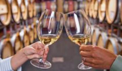 838 мостри в националния конкурс за най-качествени вина, ракии и бренди