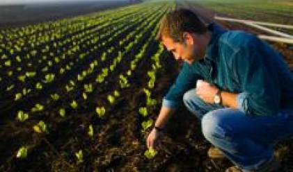 Потичат 240 млн. евро за фермери