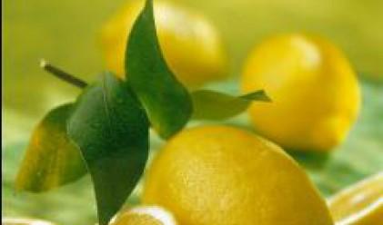 Лимоните поскъпват с 25% на едро през тази седмица