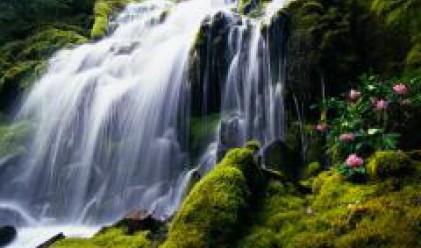 Водни завеси и водопад в българския павилион на ЕКСПО 2008