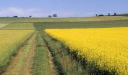 Фермери обсъдиха с евродепутат проблемите при изработване на проекти