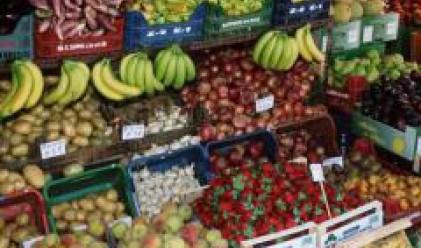 Недостиг на суровини принуждава консервните фабрики да внасят плодове и зеленчуци от чужбина
