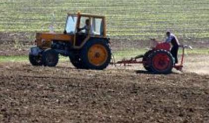 Цената на земеделската земя варира от 200 до 300 лв. за декар
