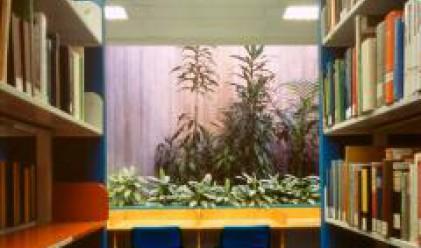 Близо 1200 библиотеки получават субсидия чрез Програмата на ООН за развитие